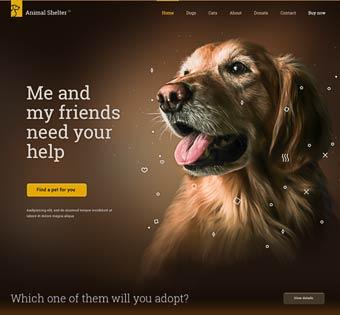 Be-Animal Shelter